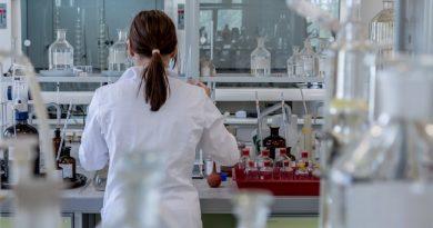 na czym polega in vitro