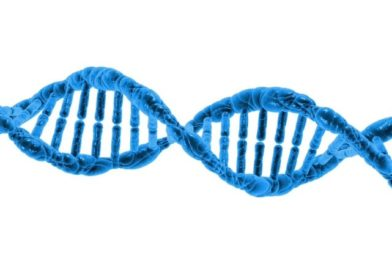 Wolne płodowe dna (cffDNA) – kiedy warto wykonać badania wolnego płodowego DNA?